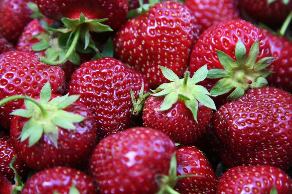 strawberryforda