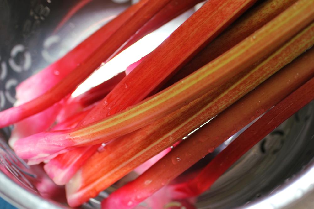 rhubarbstalks