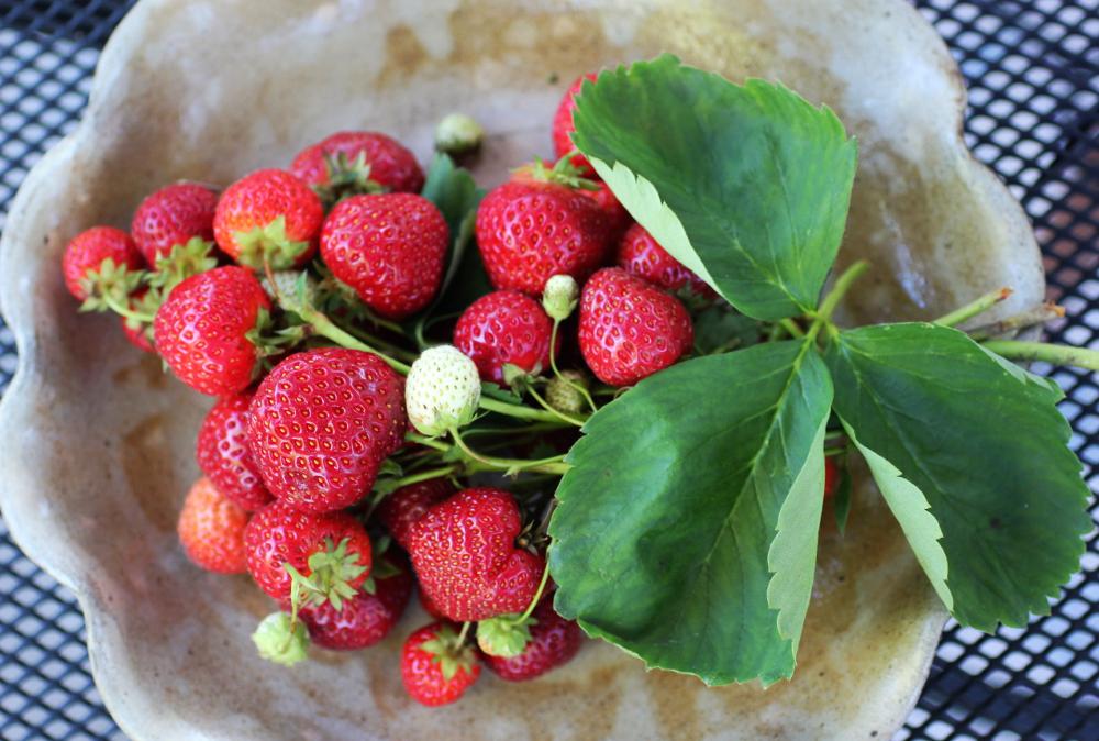 strawberrybouquet