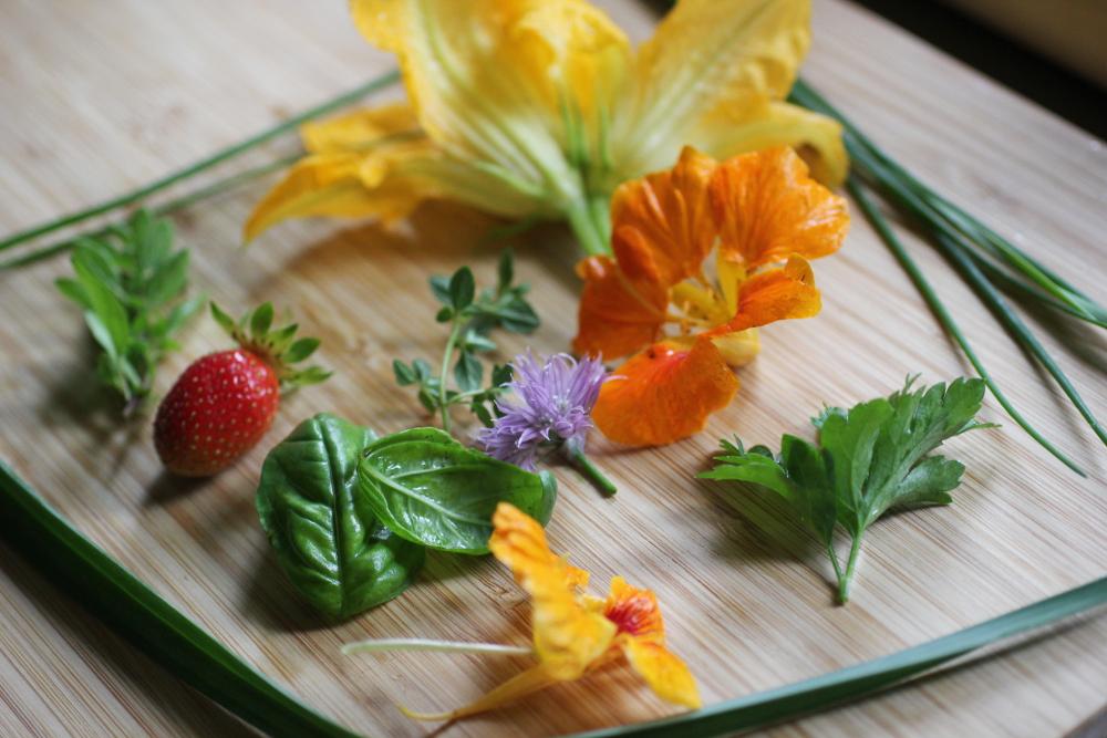 gardenmorsels